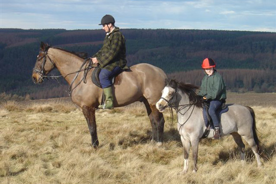 North York Moors Horse Riding